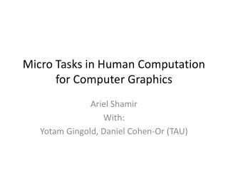 Micro Tasks in Human Computation for Computer Graphics