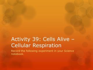 Activity 39: Cells Alive – Cellular Respiration
