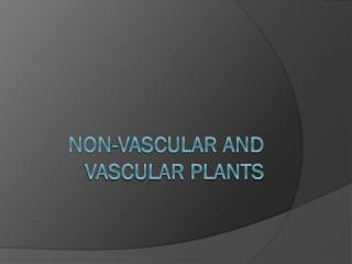 Non-Vascular and Vascular Plants