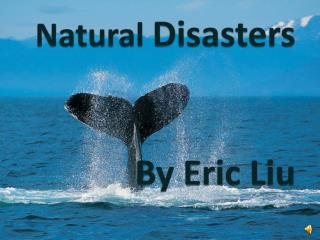 Natural  Disasters By Eric Liu
