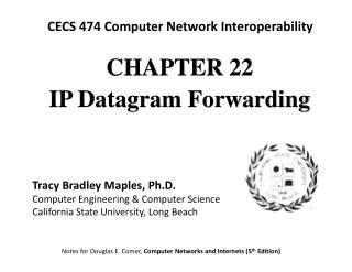 CHAPTE R 22 IP Datagram Forwarding