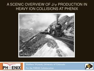 A Scenic Overview of J/ y  Production in Heavy Ion Collisions At PHENIX