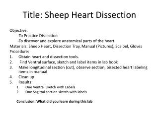 Title: Sheep Heart Dissection