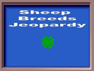Sheep  Breeds Jeopardy