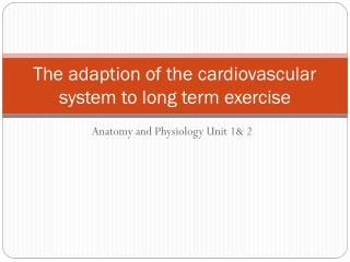 The adaption of the cardiovascular system to long term exercise