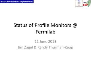 Status of Profile Monitors @ Fermilab
