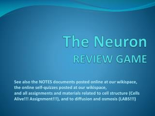 The Neuron REVIEW GAME