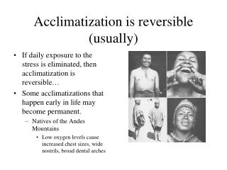 Acclimatization is reversible (usually)