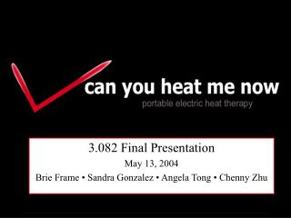 3.082 Final Presentation May 13, 2004 Brie Frame • Sandra Gonzalez • Angela Tong • Chenny Zhu