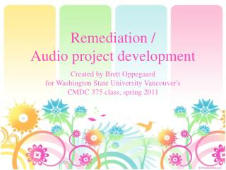 Remediation /  Audio project development