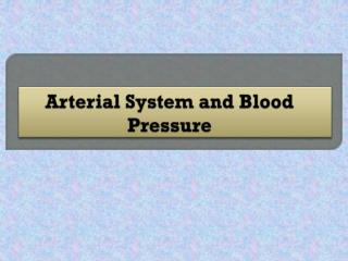 Arterial System and Blood Pressure