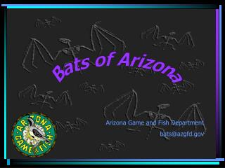 Bats of Arizona