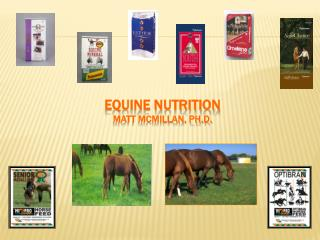Equine Nutrition Matt McMillan, Ph.D.