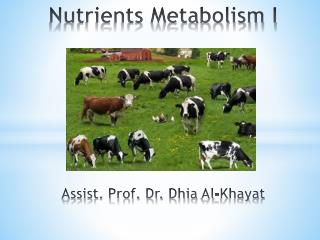 Nutrients Metabolism I Assist. Prof. Dr.  Dhia  Al- Khayat