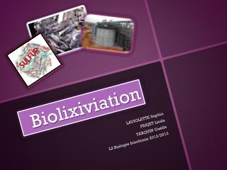 Biolixiviation