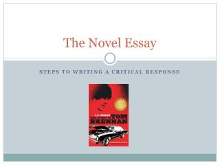 The Novel Essay