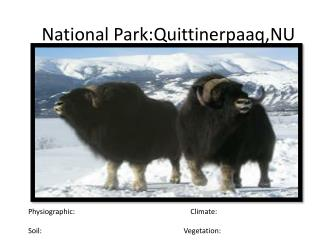 National  Park:Quittinerpaaq,NU