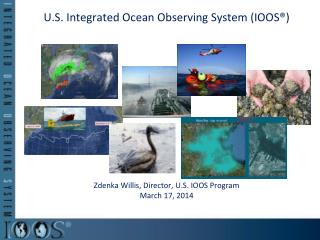 U.S. Integrated Ocean Observing System (IOOS®)