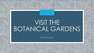 Visit the Botanical Gardens
