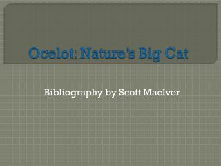 Ocelot: Nature's Big Cat