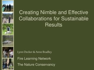 Creating  Nimble and Effective Collaborations for Sustainable Results
