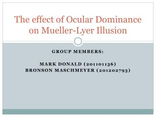 The effect of Ocular Dominance on Mueller- Lyer  Illusion