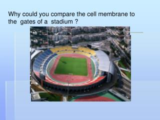 Why could you compare the cell membrane to the  gates of a  stadium ?