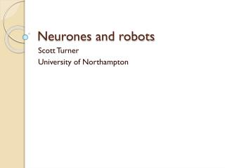 Neurones  and robots