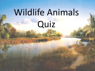 Wildlife Animals Quiz