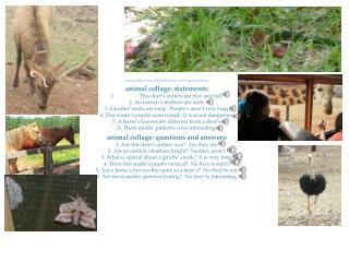 personal  photos  from  Wild Animal Safari in Georgia & elsewhere animal collage:  statements: