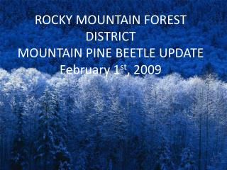 ROCKY MOUNTAIN FOREST DISTRICT MOUNTAIN PINE BEETLE UPDATE February 1 st , 2009