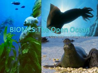 BIOMES:The  Open Ocean