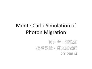 Monte Carlo Simulation of Photon Migration