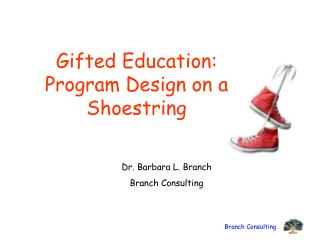 Gifted  Education:  Program  Design  on a Shoestring