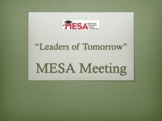 MESA Meeting