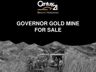 GOVERNOR GOLD MINE  FOR  SALE
