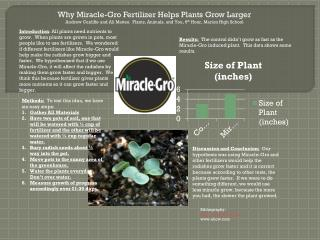 Why Miracle- Gro  Fertilizer Helps Plants Grow Larger