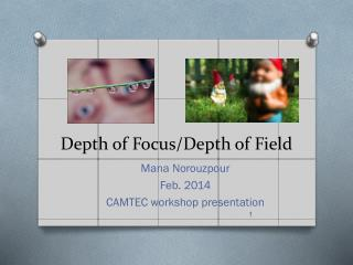 Depth of Focus/Depth of Field