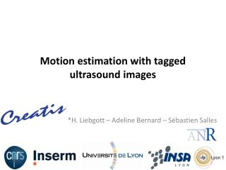 Motion estimation with tagged ultrasound  images