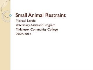 Small Animal Restraint