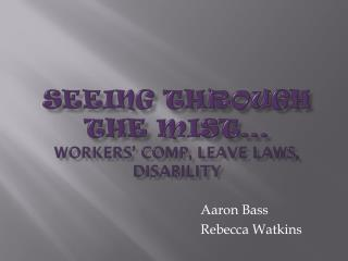 SEEING THROUGH THE MIST… workers' comp, leave laws, disability