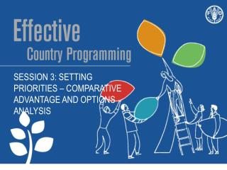 Session  3:  Setting priorities –  Comparative  advantage  and  options analysis