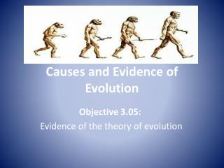 Causes and Evidence of Evolution