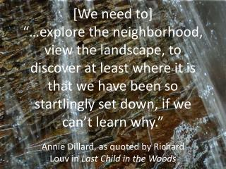 Annie Dillard, as quoted by Richard Louv in Last Child in the Woods