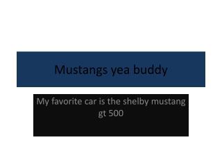 Mustangs yea buddy