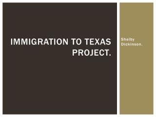 Immigration to Texas Project.
