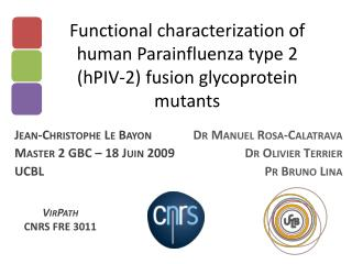 Functional characterization of human Parainfluenza type 2 (hPIV-2) fusion glycoprotein mutants