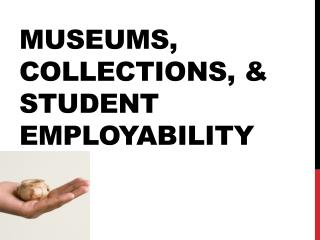 Museums, Collections, & Student Employability