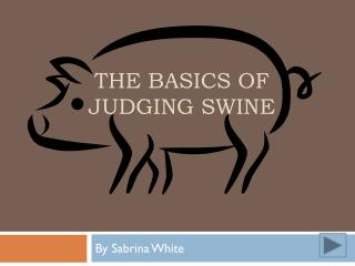 The basics of judging swine