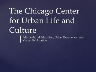 The Chicago Center for Urban Life and Culture